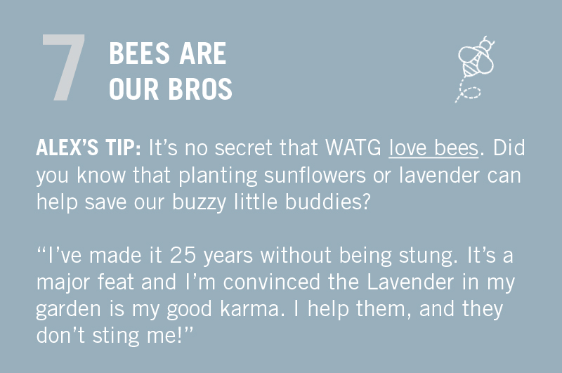 "MOVE THOSE FEET. ALEX'S TIP: ""I've made it 25 years without being stung by a bee. It's a major feat and I swear that the Lavender in my garden is my good karma. I help them, and they don't sting me!"""